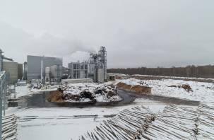 Московские экологи потребовали у прокуратуры разобраться с «Эггером»