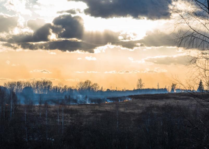 Особый режим введен на территории Смоленска