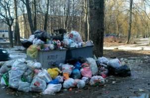 «Спасите Десногорск!» Жители тонут в мусоре