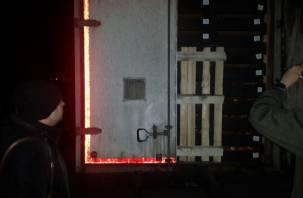 Смоленские пограничники пресекли ввоз санкционных яблок из Брянской области