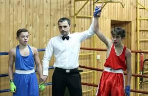 В Смоленске прошло первенство города по боксу