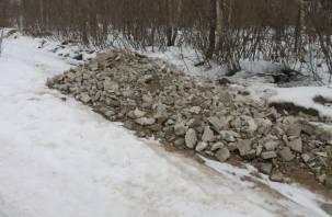 Активисты требуют от смоленских властей ликвидировать стихийные свалки вдоль дорог