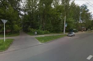 «Нет» торгово-бытовому центру. В Смоленске сохранят зеленую зону в районе улицы Нормандии-Неман