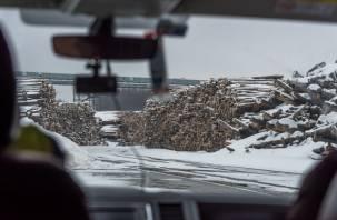 Росприроднадзор оштрафует Эггер за загрязнение реки Гжать
