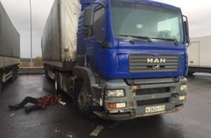Смоленский дальнобойщик погиб в Санкт-Петербурге