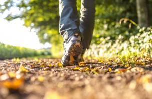 Короткие прогулки могут предотвратить преждевременную смерть