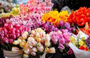 Как выбрать цветы на 8 марта и сохранить их дома