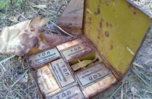 В Талашкино предотвратили взрыв мины