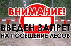 На 21 день. Смолянам запретили ходить и ездить в лес