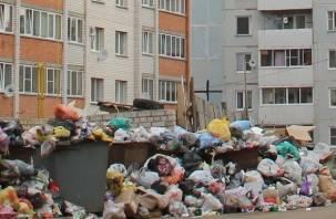 Семья выбросила на помойку несколько миллионов рублей