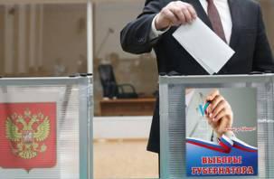 В Госдуме хотят снизить муниципальный фильтр на губернаторских выборах