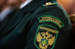 Комментарии к нашумевшему скандалу с сотрудниками Росприроднадзора