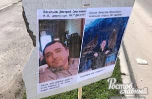 Дорожные ямы закрыли портретами чиновников в Ростове
