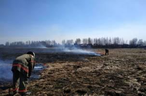 20 метров до ближайших домов. Огнеборцы тушат пожар в Гедеоновке