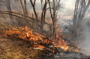 Смоленские пожарные продолжают бороться с палами травы в регионе
