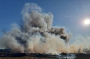 «Что-то взрывается». В Сети появилось видео мощного пожара в Ярцевском районе