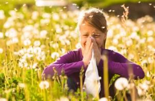 Стало известно, от какой аллергии россияне страдают больше всего