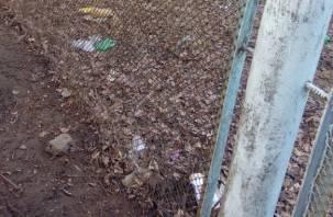 Территория вокруг смоленского детского сада превратилась в свалку