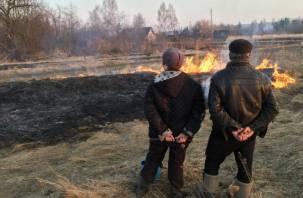 175 травяных палов зафиксировано в Смоленской области