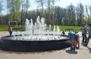 С фонтаном и без туалетов. Smolnarod проинспектировал парк «Соловьиная роща»