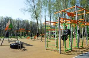 Где в Смоленске откроют площадки для воркаута