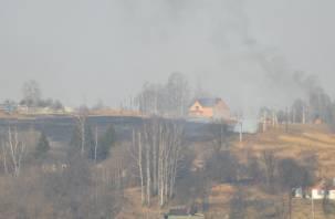 Свыше четырех тысяч гектаров охватил огонь на Смоленщине