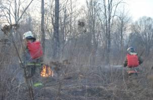 Смоленщина попала в список регионов, где ждут повышения пожарной опасности