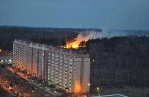 Огненная стихия все больше захватывает территорию Смоленщины