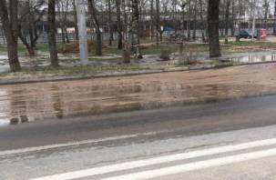Смоляне из-за аварии на водопроводе остались без воды