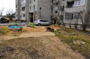 В Смоленске собака чуть не покусала детей