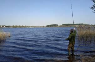 Ущерб 65 тысяч рублей. Смолянин незаконно ловил рыбу в Кардымовском районе