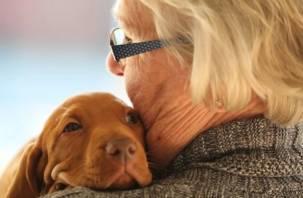 Продлевают жизнь. Пожилым людям необходимо заводить животных