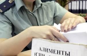 Неплательщица алиментов задолжала ребенку более 400 тысяч рублей и получила 10 суток ареста