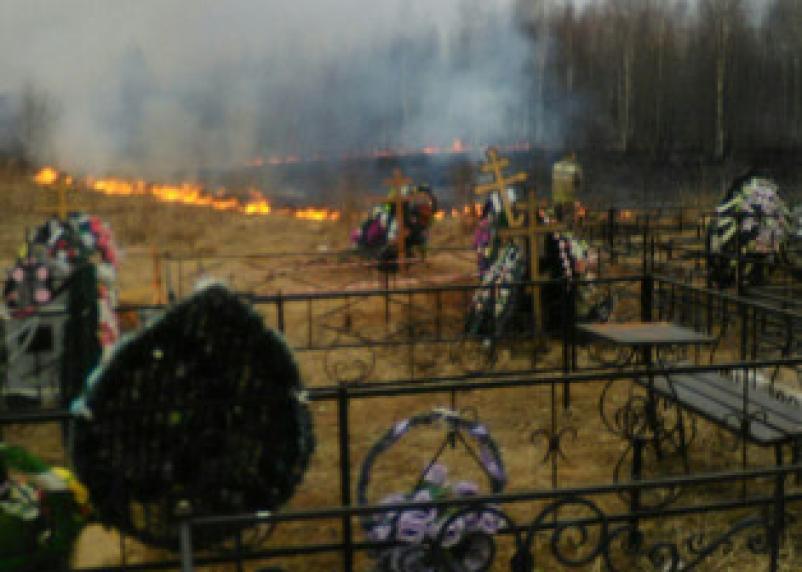 Горят кладбища и дома. Огненный флэшмоб по-смоленски