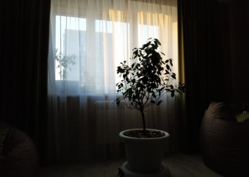 В Смоленске маленький ребенок выпал из окна 5-го этажа. Прокуратура назначила проверку