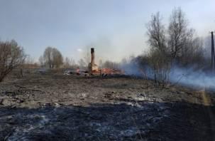 Пожар у Лубино: огонь чуть не уничтожил деревню в Смоленской области