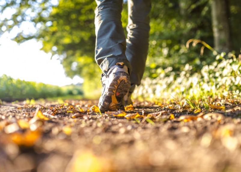 Сколько времени нужно уделять пешим прогулкам, чтобы сбросить вес