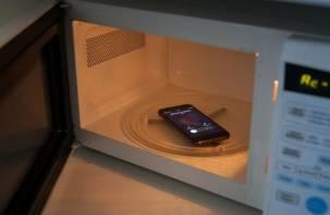Учёным стало известно вредны ли микроволновки и мобильники для человека