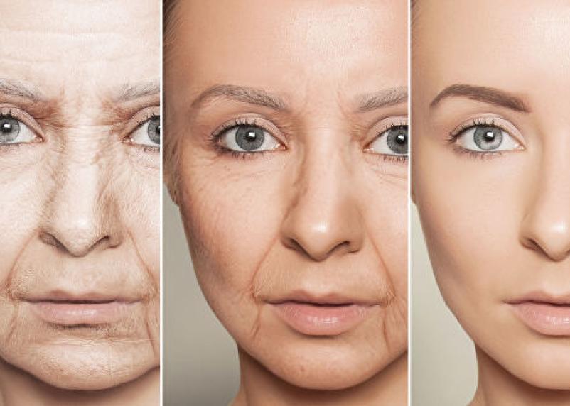 Стоп смерть. Российские генетики доказали, что можно корректировать генетическую «программу старения»