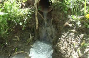 «Молочные реки»: под Смоленском предприятие устроило незаконный слив отходов