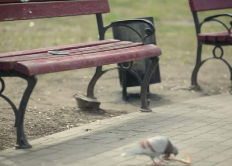 Смолянину за найденный на скамейке мобильник грозит 5 лет тюрьмы