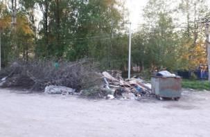 Смоляне продолжают жаловаться на горы мусора