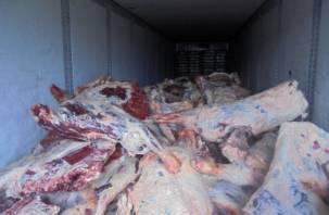 Смоленские специалисты забраковали 12 тонн говядины