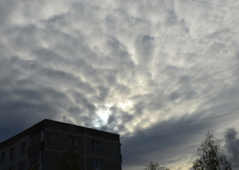 Какой будет погода в четверг в Смоленской области