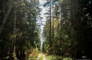 В Смоленской области поправить здоровье в санатории дорого