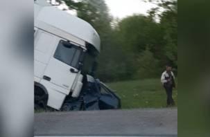 Подробности трагедии в Рославльском районе. Водитель легковушки вылетел на встречку и попал под фуру
