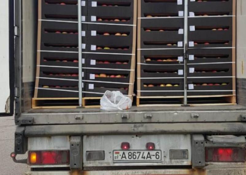 Смоленские таможенники задержали 20 тонн польских и молдавских яблок