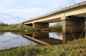 Экологи: речная вода по всему миру полна лекарств и антибиотиков
