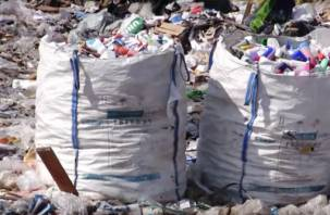 «Ваш мусор вынесут знакомые». Условия домашнего карантина при коронавирусе