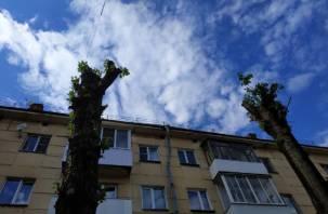 Работают «профессионалы». В Смоленске улицу Николаева «украшают» пни